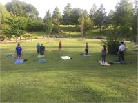 Park Yoga In-Person/AND VIRTUAL enroll